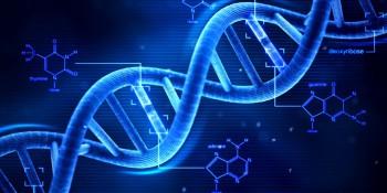 Nous sommes à l'aube d'une révolution de l'édition de gènes, sommes-nous prêts ?