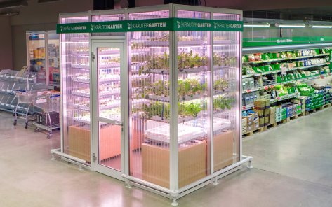 Indoor farm in Berlin's Metro Cash & Carry supermarket. Photograph: Merav Maroody/InFarm