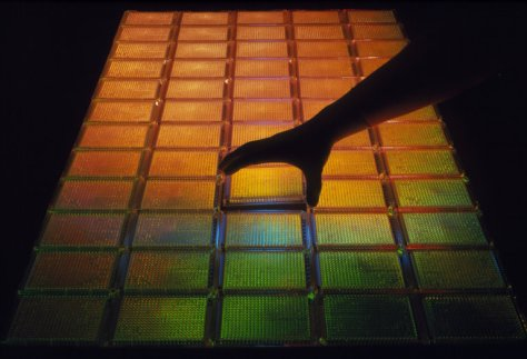 Sixty trays can contain the entire human genome as 23,040 different fragments of cloned DNA. Credit James King-Holmes/Science Source