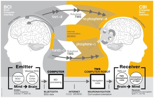 The brain-to-brain communication system. Credit: PLOS ONE