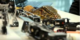 robots reptiliens capture youtube